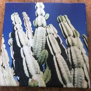 Other - Cactus Print on Canvas with hardware